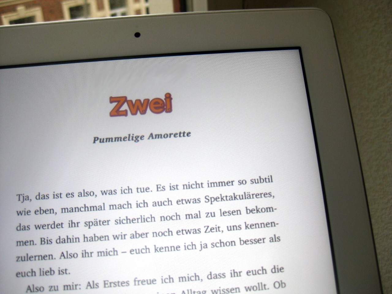 "eBook-Layout ""Karma und Sue"""