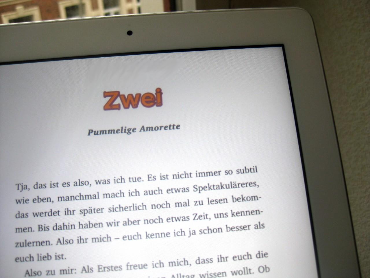 """eBook-Layout """"Karma und Sue"""""""
