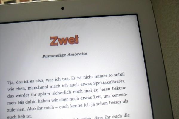 eBook-Layout mit Kapitelüberschrifte