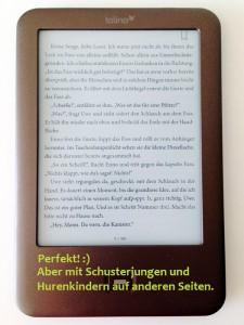 Keine Absatzkontrolle, Hurenkinder oder Schusterjungen im eBook