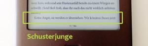Ein Schusterjunge (einzelne Zeile) im eBook
